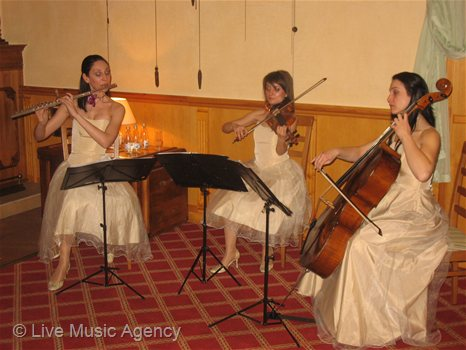 String Trio New Years Eve | photo: livemusicagency.com